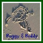 buggyandbuddy